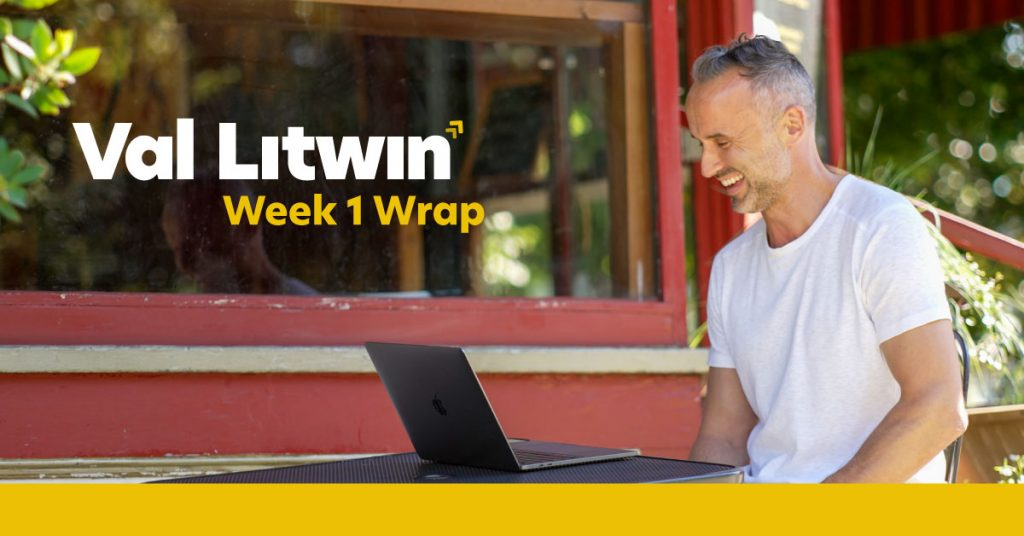 Val Litwin Leadership Campaign